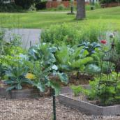 Favorite Gardening Podcasts