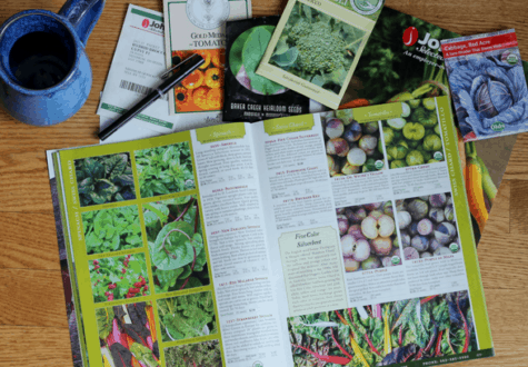 seed catalogs and packets