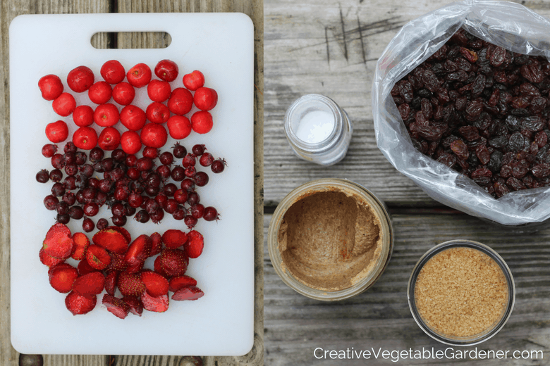 oatmeal fixings for healthy camping meals