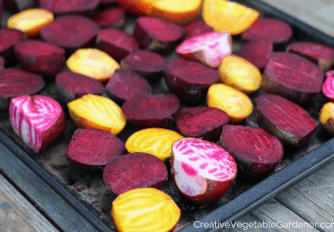 winter beets harvested from garden about to be cooked