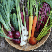 10 healthy veggie side dishes straight from the fall garden