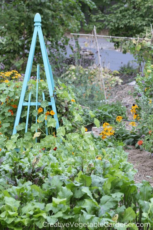 garden obelisk in photos of home vegetable gardens