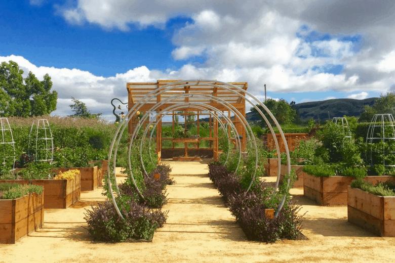 arbor in garden pictures