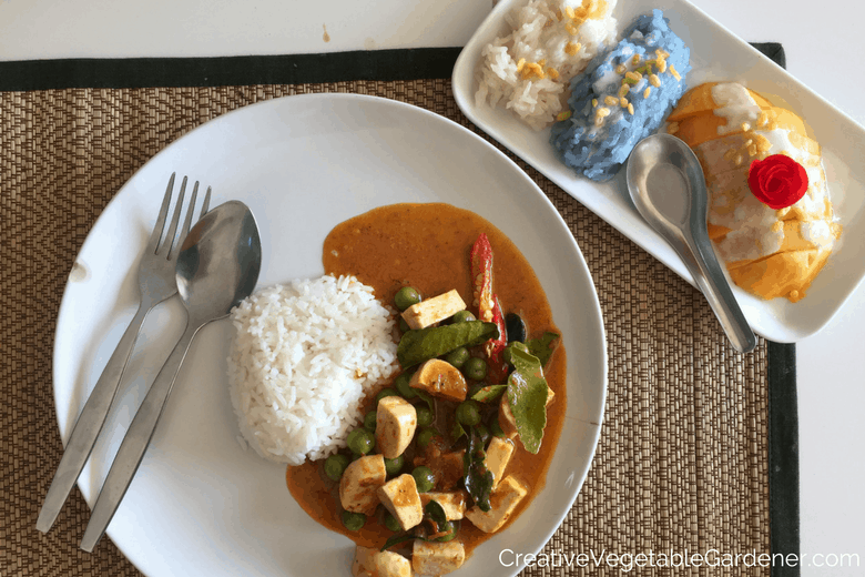 curry and mango thai food