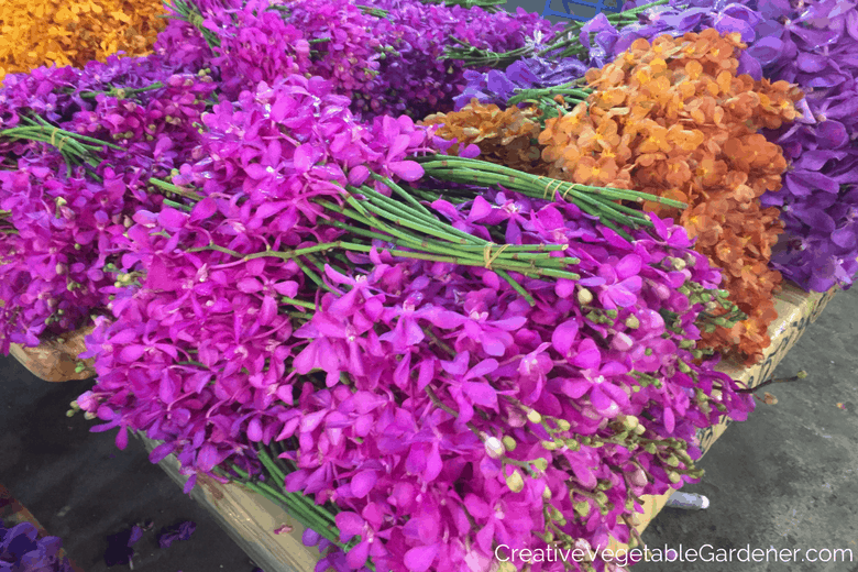flowers at a thailand market