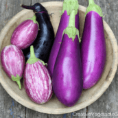 15 Purple Vegetables You Need to Grow in Your Garden