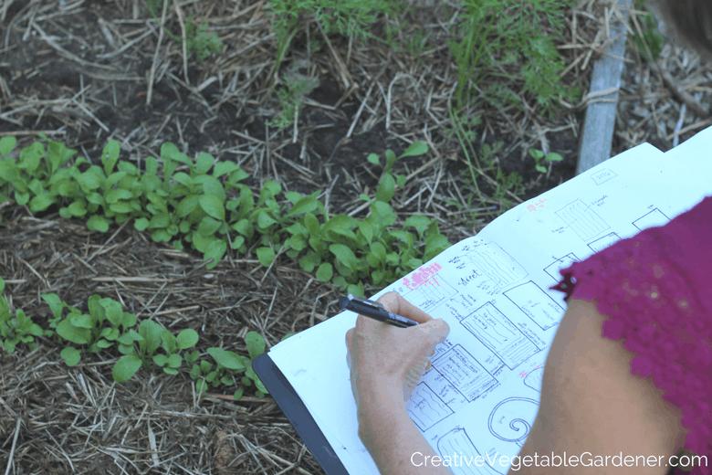 creating a plan for an organic garden
