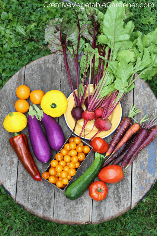 vegetable harvest from a healthy garden