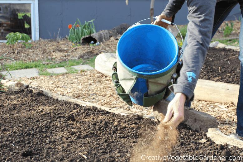 adding organic fertilizer to garden bed