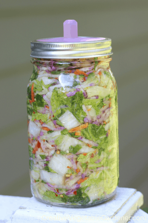 making fermented foods kimchi