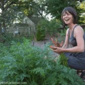 Grow great carrots this year with these helpful tips