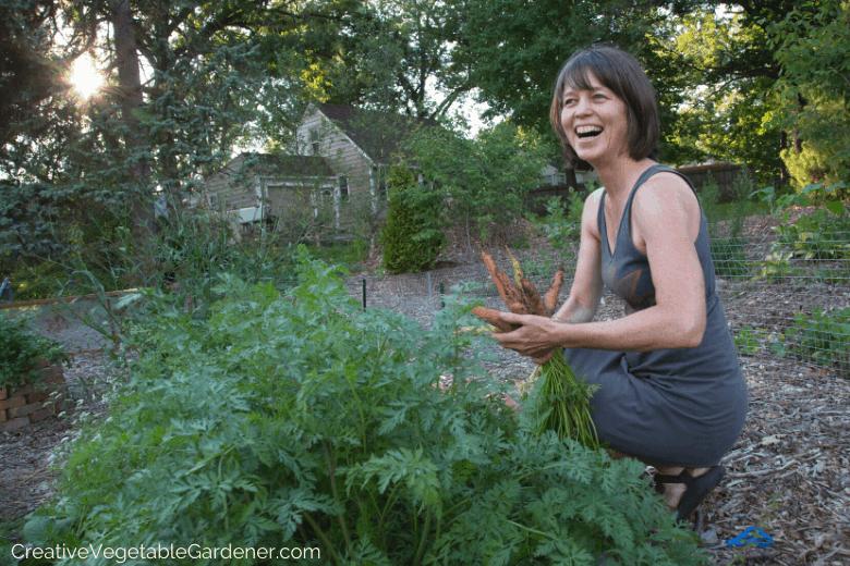 planting garden carrots