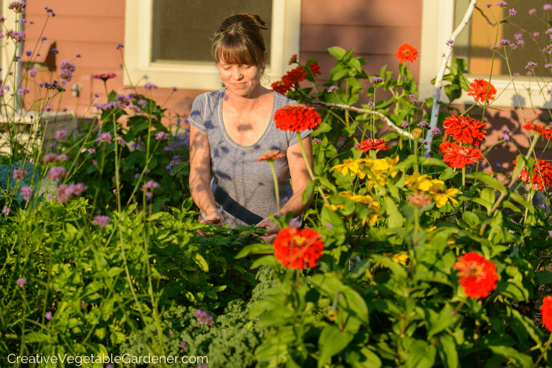 vegetable and flower garden ideas