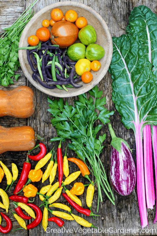 colorful garden harvest as a garden goal