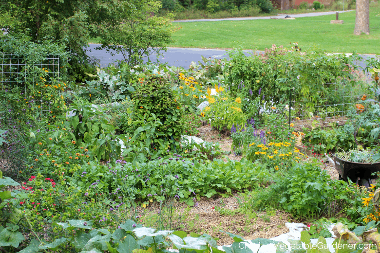 beautiful vegetable garden goals